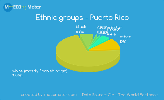 American data essay ethnic group